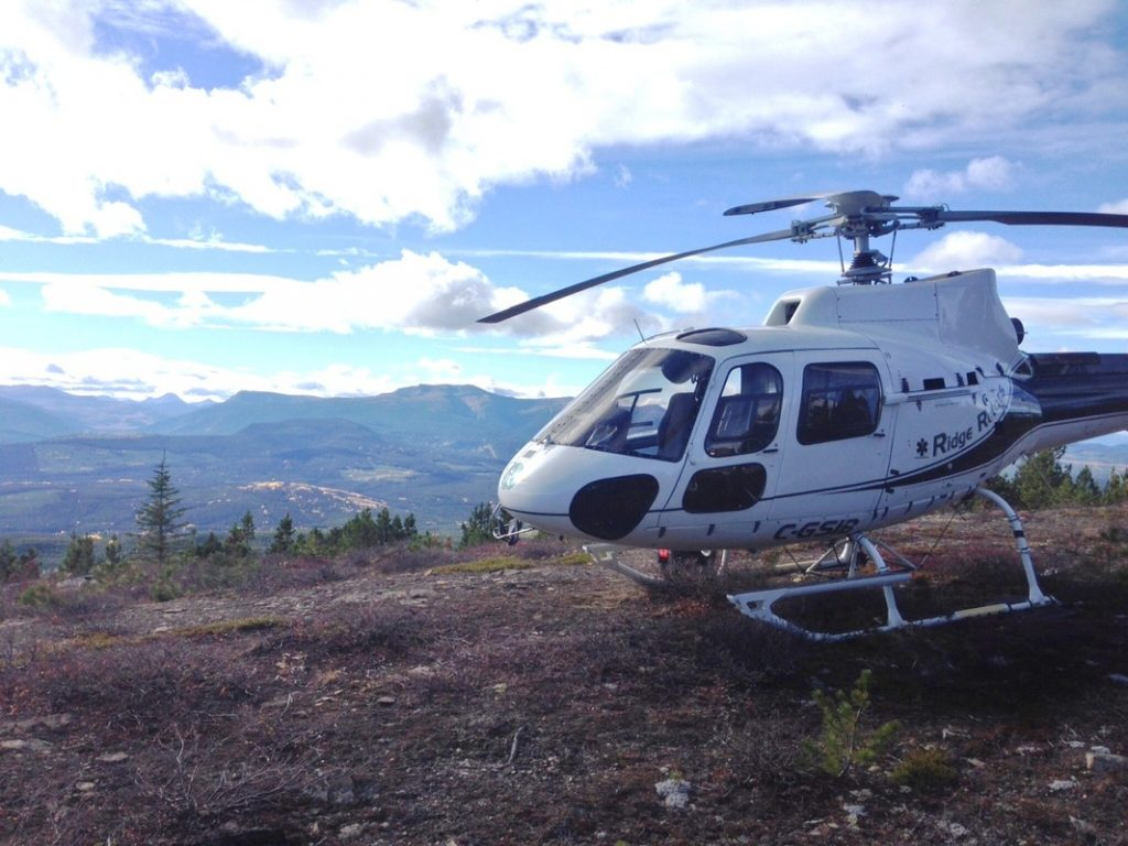 Grizfest Ridge Rotors